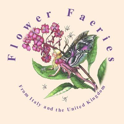 Flower, fairies and fairy flowers from faeries illustrators Natalia Pierandrei and Myrea Pettit